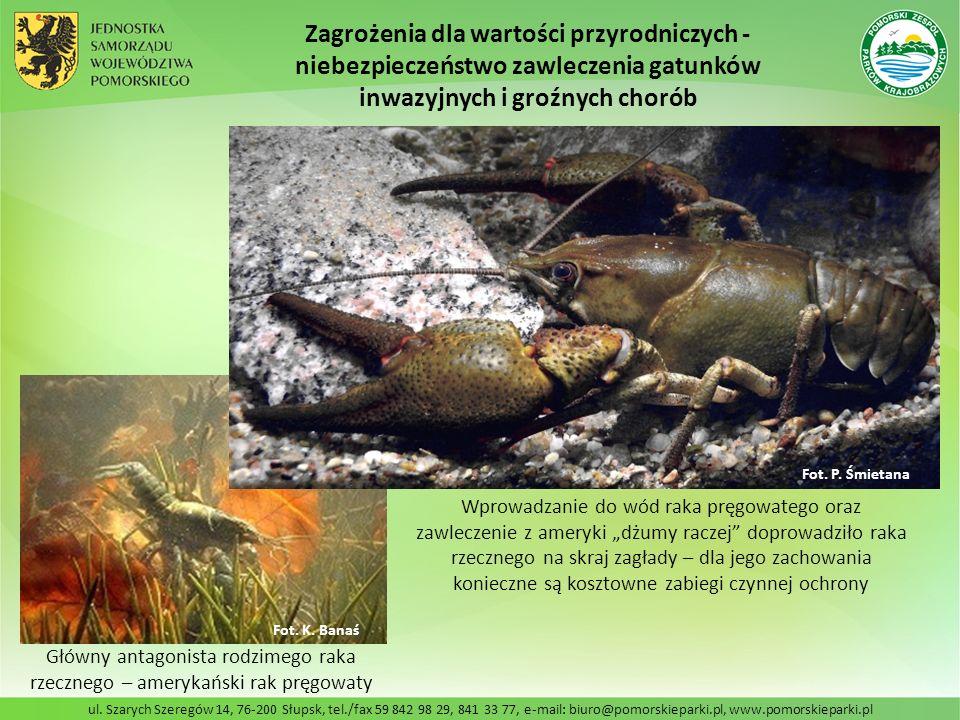 ul. Szarych Szeregów 14, 76-200 Słupsk, tel./fax 59 842 98 29, 841 33 77, e-mail: biuro@pomorskieparki.pl, www.pomorskieparki.pl Zagrożenia dla wartoś