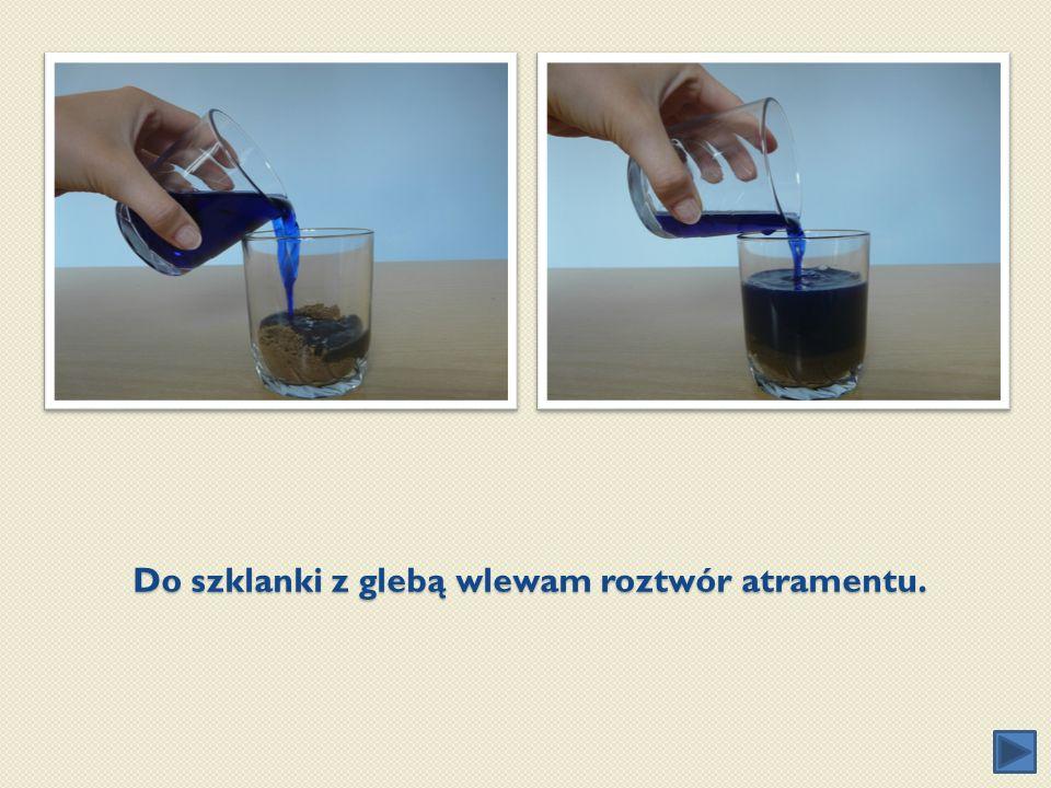Do szklanki z glebą wlewam roztwór atramentu.