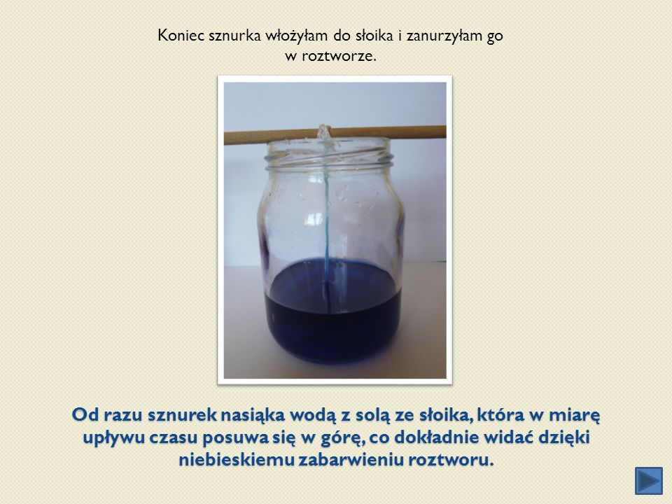 Od razu sznurek nasiąka wodą z solą ze słoika, która w miarę upływu czasu posuwa się w górę, co dokładnie widać dzięki niebieskiemu zabarwieniu roztwo