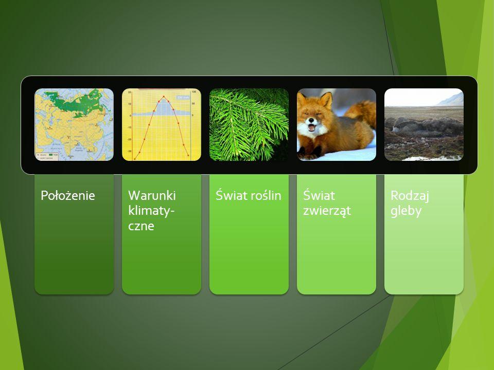 PołożenieWarunki klimaty- czne Świat roślinŚwiat zwierząt Rodzaj gleby
