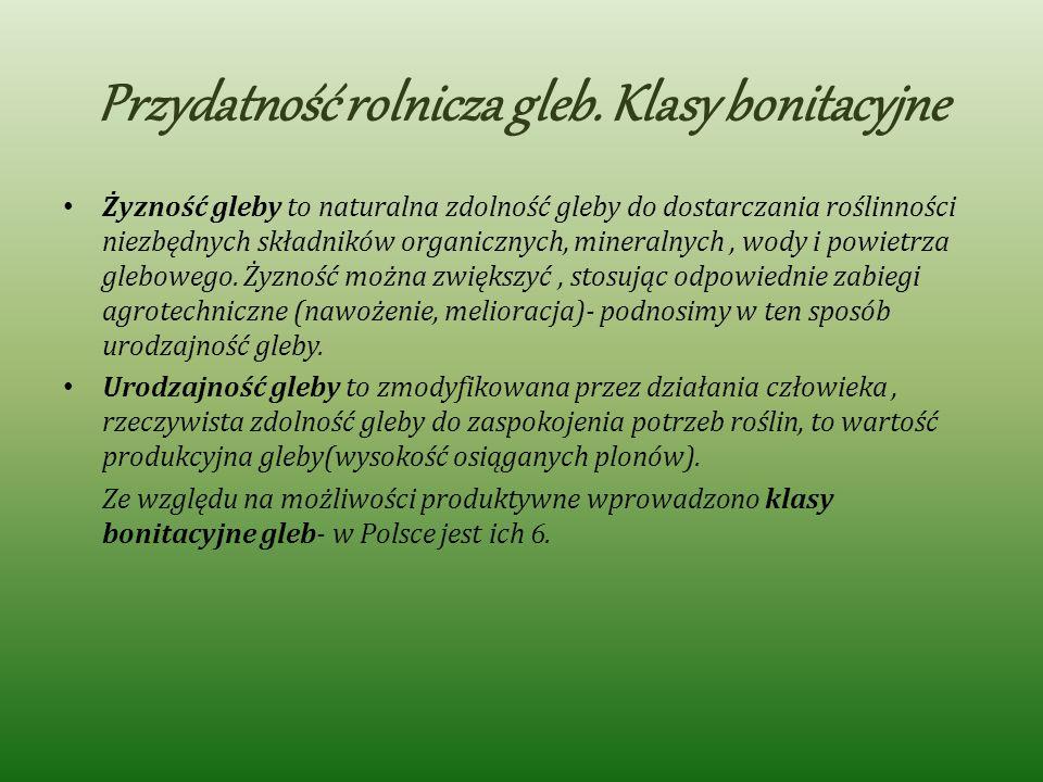 Przydatność rolnicza gleb. Klasy bonitacyjne Żyzność gleby to naturalna zdolność gleby do dostarczania roślinności niezbędnych składników organicznych