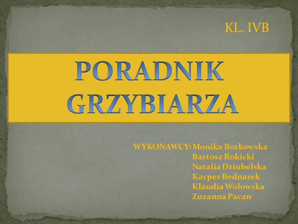 WYKONAWCY: Monika Borkowska Bartosz Rokicki Natalia Dziubelska Kacper Bednarek Klaudia Wolowska Zuzanna Pacan KL. IVB