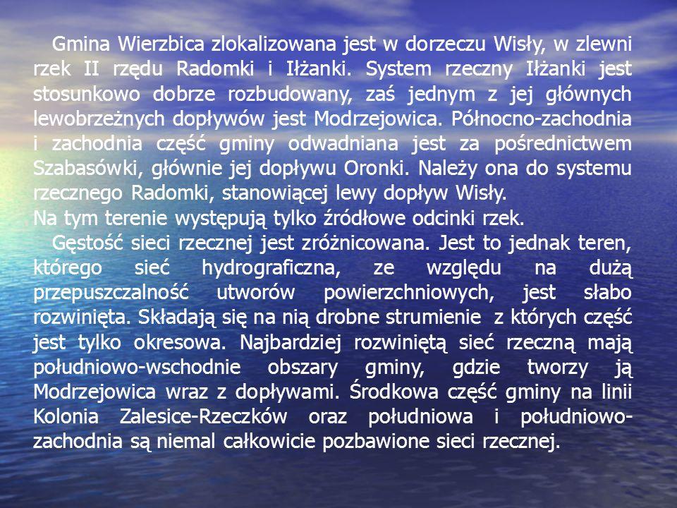 Gmina Wierzbica zlokalizowana jest w dorzeczu Wisły, w zlewni rzek II rzędu Radomki i Iłżanki. System rzeczny Iłżanki jest stosunkowo dobrze rozbudowa