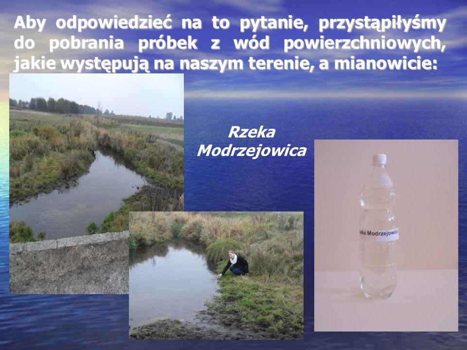Aby odpowiedzieć na to pytanie, przystąpiłyśmy do pobrania próbek z wód powierzchniowych, jakie występują na naszym terenie, a mianowicie: Rzeka Modrz
