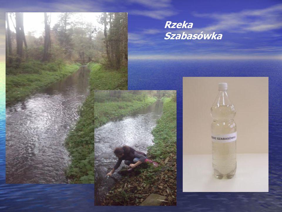 Rzeka Szabasówka