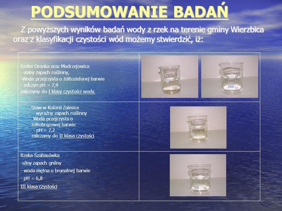 PODSUMOWANIE BADAŃ Z powyższych wyników badań wody z rzek na terenie gminy Wierzbica oraz z klasyfikacji czystości wód możemy stwierdzić, iż: Z powyżs