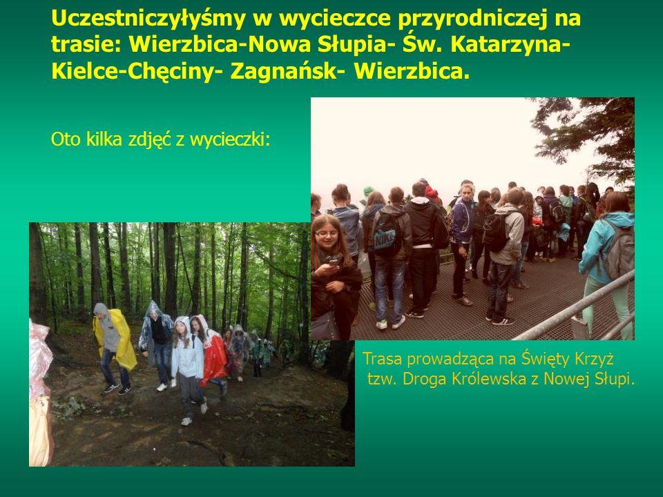 Uczestniczyłyśmy w wycieczce przyrodniczej na trasie: Wierzbica-Nowa Słupia- Św. Katarzyna- Kielce-Chęciny- Zagnańsk- Wierzbica. Oto kilka zdjęć z wyc