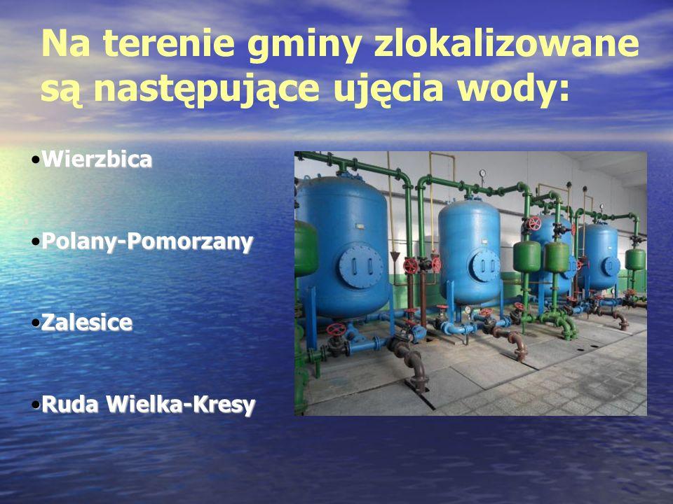 Na terenie gminy zlokalizowane są następujące ujęcia wody: WierzbicaWierzbica Polany-PomorzanyPolany-Pomorzany ZalesiceZalesice Ruda Wielka-KresyRuda