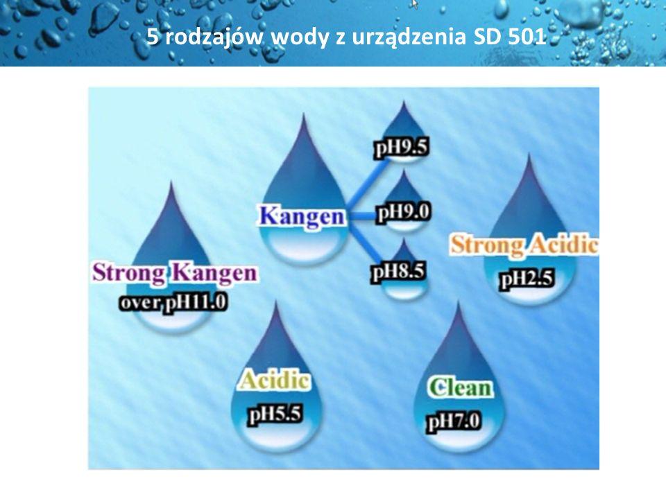 Woda Kangen posiada właściwości wody, Woda Kangen posiada właściwości wody, jaka była na ziemi, zanim nasza planeta uległa zanieczyszczeniu.