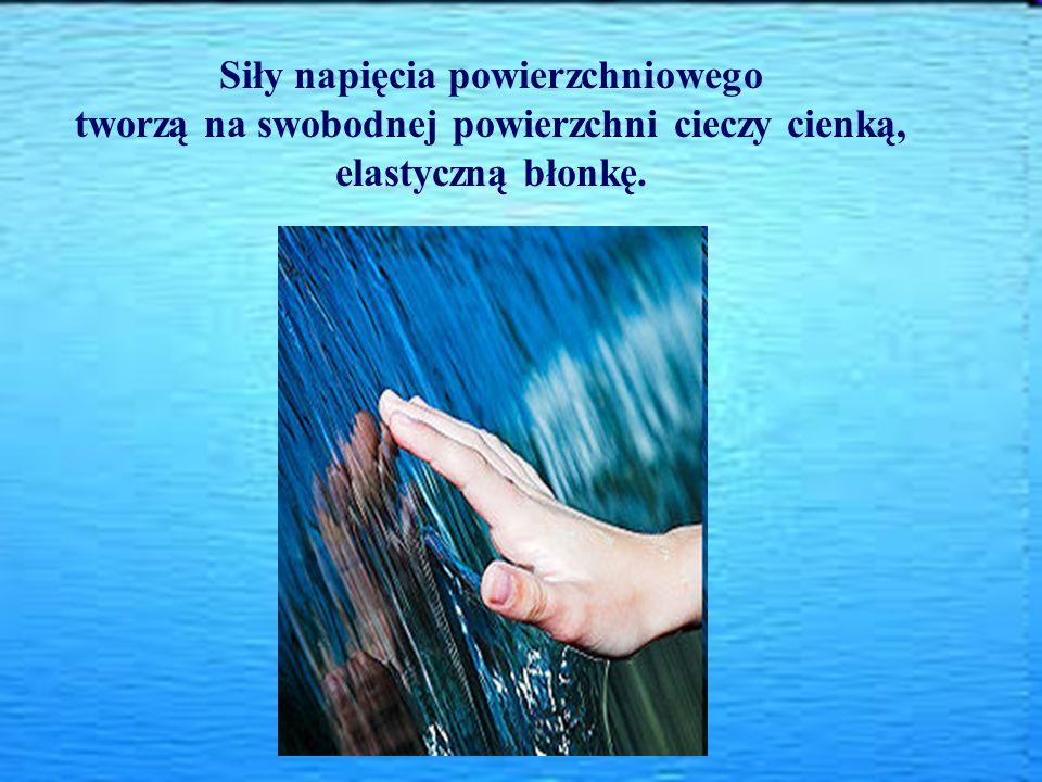 Siły napięcia powierzchniowego tworzą na swobodnej powierzchni cieczy cienką, elastyczną błonkę.