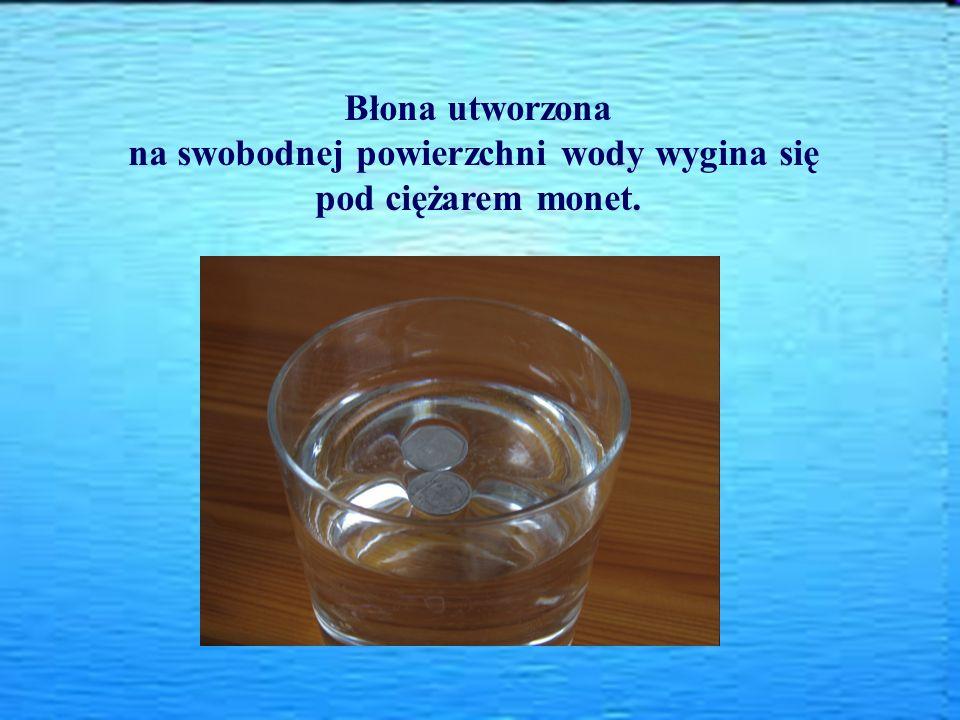 Błona utworzona na swobodnej powierzchni wody wygina się pod ciężarem monet.