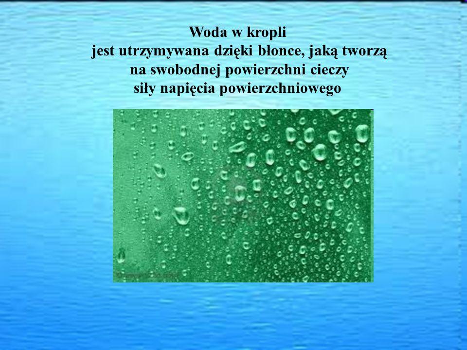 Woda w kropli jest utrzymywana dzięki błonce, jaką tworzą na swobodnej powierzchni cieczy siły napięcia powierzchniowego