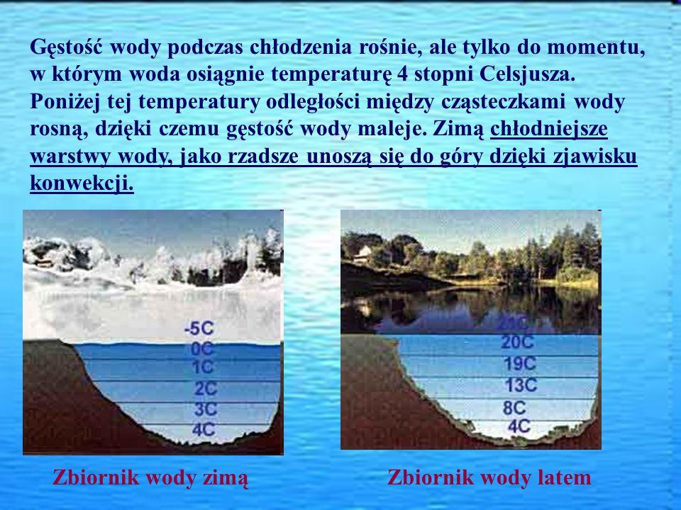Gęstość wody podczas chłodzenia rośnie, ale tylko do momentu, w którym woda osiągnie temperaturę 4 stopni Celsjusza. Poniżej tej temperatury odległośc