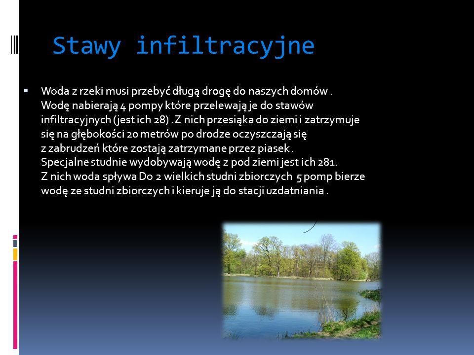 Stawy infiltracyjne Woda z rzeki musi przebyć długą drogę do naszych domów.