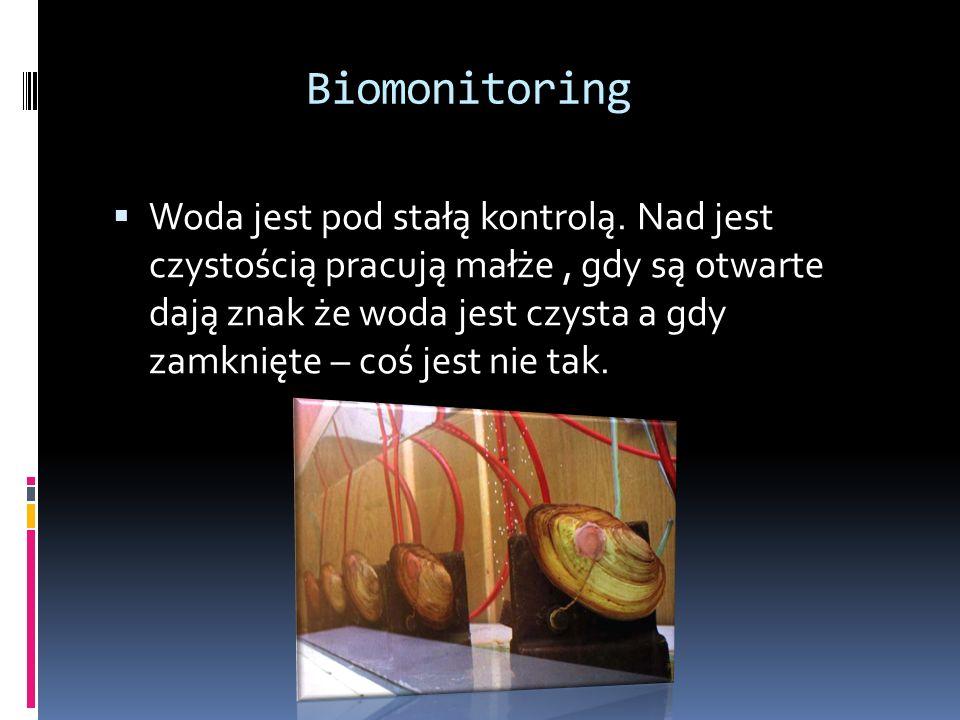 Biomonitoring Woda jest pod stałą kontrolą.