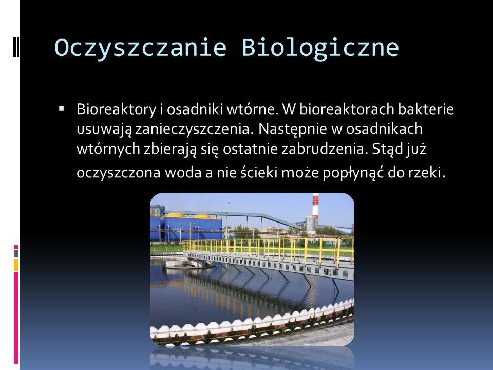 Oczyszczanie Biologiczne Bioreaktory i osadniki wtórne.