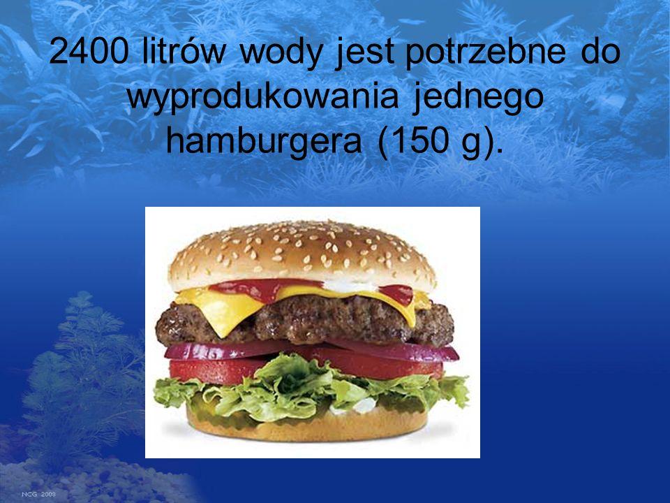 2400 litrów wody jest potrzebne do wyprodukowania jednego hamburgera (150 g).