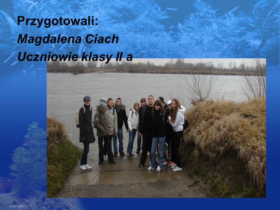 Przygotowali: Magdalena Ciach Uczniowie klasy II a