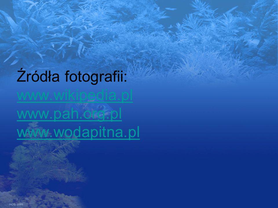 Źródła fotografii: www.wikipedia.pl www.pah.org.pl www.wodapitna.pl www.wikipedia.pl www.pah.org.pl www.wodapitna.pl