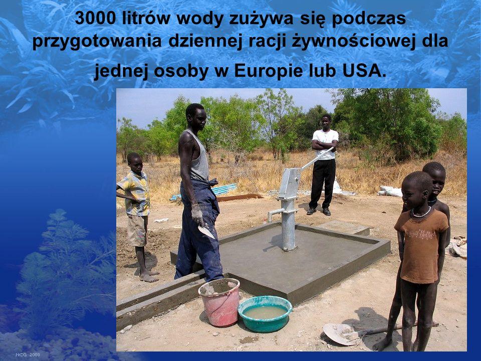 3000 litrów wody zużywa się podczas przygotowania dziennej racji żywnościowej dla jednej osoby w Europie lub USA.