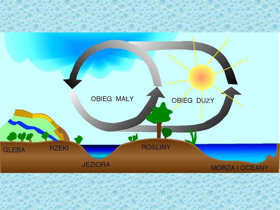 W globalnym cyklu krążenia wody wyróżnia się następujące fazy i przemiany: 1.Parowanie wody z powierzchni mórz, oceanów, lądów.