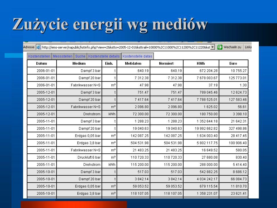 Zużycie energii wg mediów