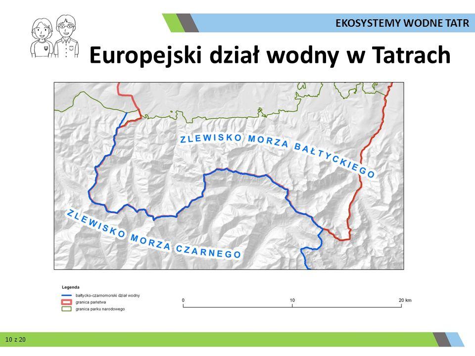 Europejski dział wodny w Tatrach 10 z 20 EKOSYSTEMY WODNE TATR