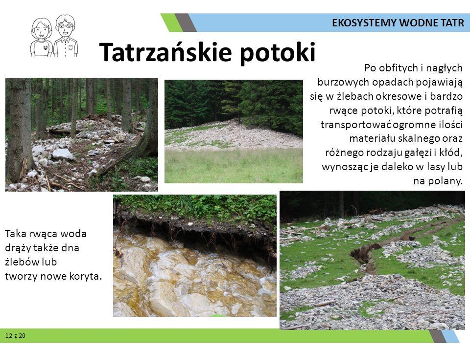Tatrzańskie potoki Po obfitych i nagłych burzowych opadach pojawiają się w żlebach okresowe i bardzo rwące potoki, które potrafią transportować ogromn