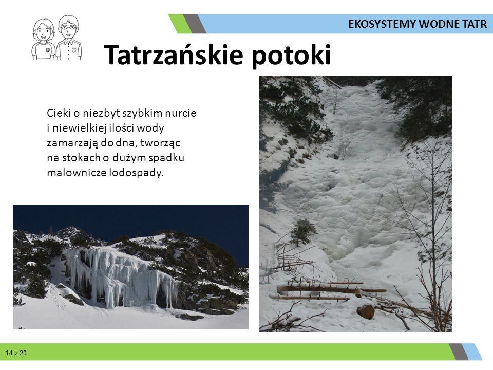 Cieki o niezbyt szybkim nurcie i niewielkiej ilości wody zamarzają do dna, tworząc na stokach o dużym spadku malownicze lodospady. Tatrzańskie potoki