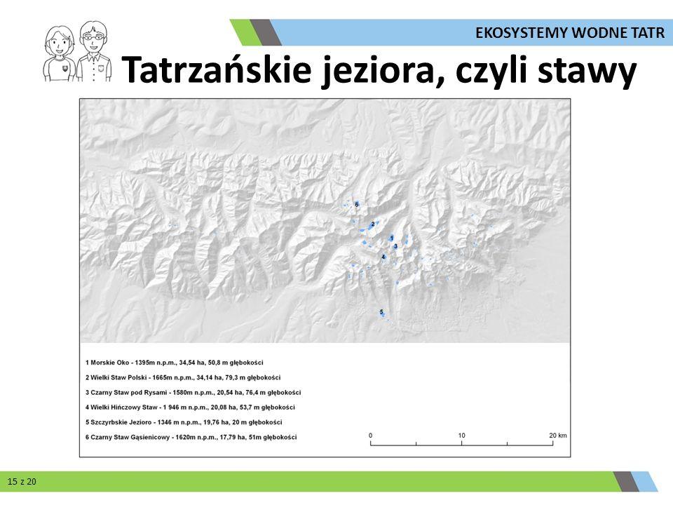 Tatrzańskie jeziora, czyli stawy 15 z 20 EKOSYSTEMY WODNE TATR