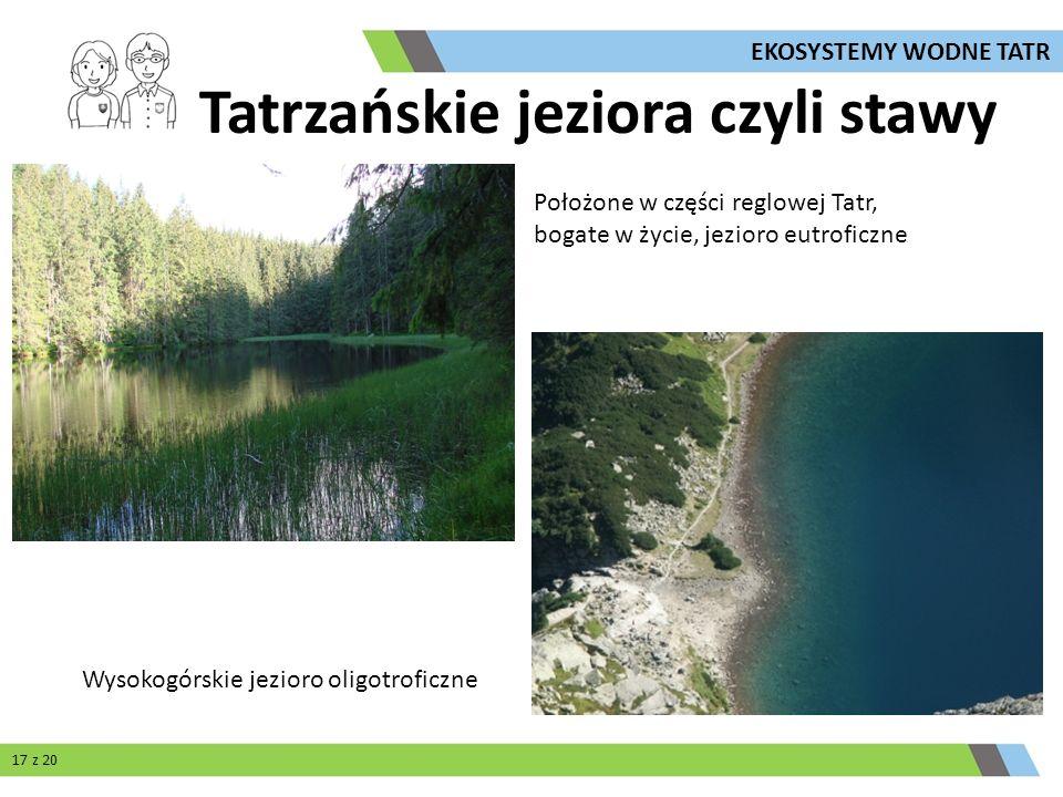 Położone w części reglowej Tatr, bogate w życie, jezioro eutroficzne Wysokogórskie jezioro oligotroficzne 17 z 20 Tatrzańskie jeziora czyli stawy EKOS