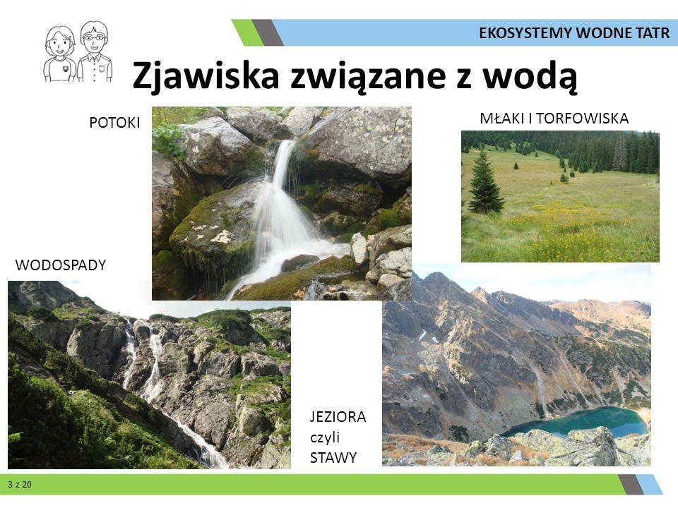 Zjawiska związane z wodą POTOKI JEZIORA czyli STAWY WODOSPADY MŁAKI I TORFOWISKA 3 z 20 EKOSYSTEMY WODNE TATR