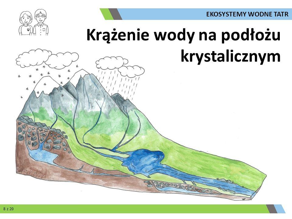 Krążenie wody na podłożu krystalicznym 8 z 20 EKOSYSTEMY WODNE TATR