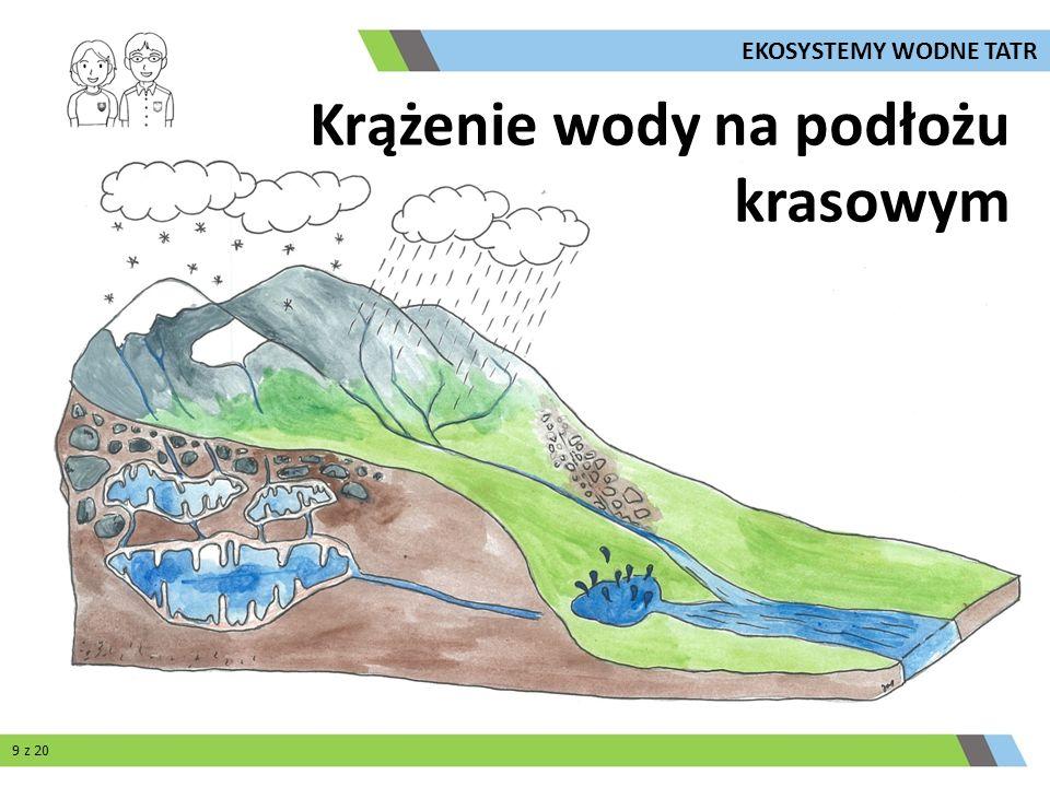 Krążenie wody na podłożu krasowym 9 z 20 EKOSYSTEMY WODNE TATR