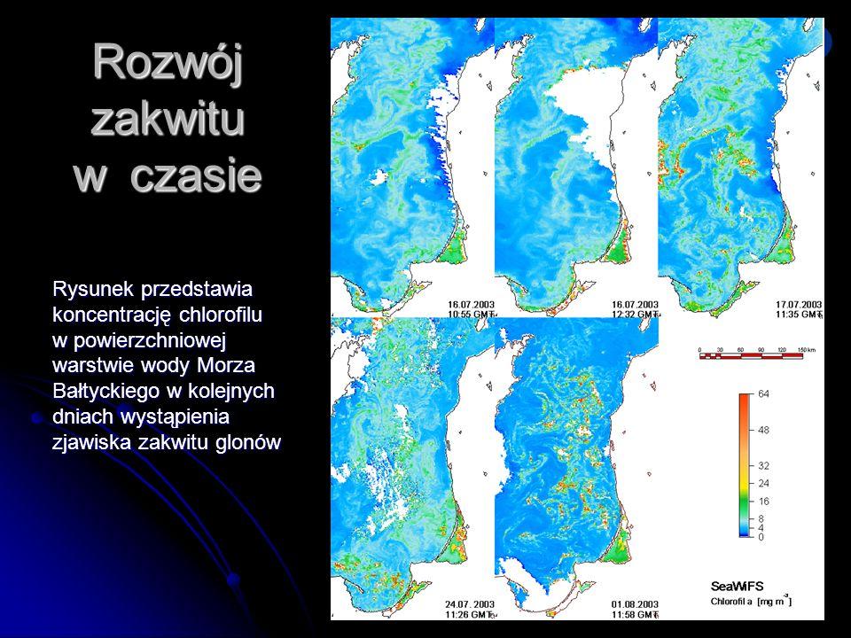 Dni Technik Satelitarnych Warszawa 21-24.06.2007 Rozwój zakwitu w czasie Rysunek przedstawia koncentrację chlorofilu w powierzchniowej warstwie wody M