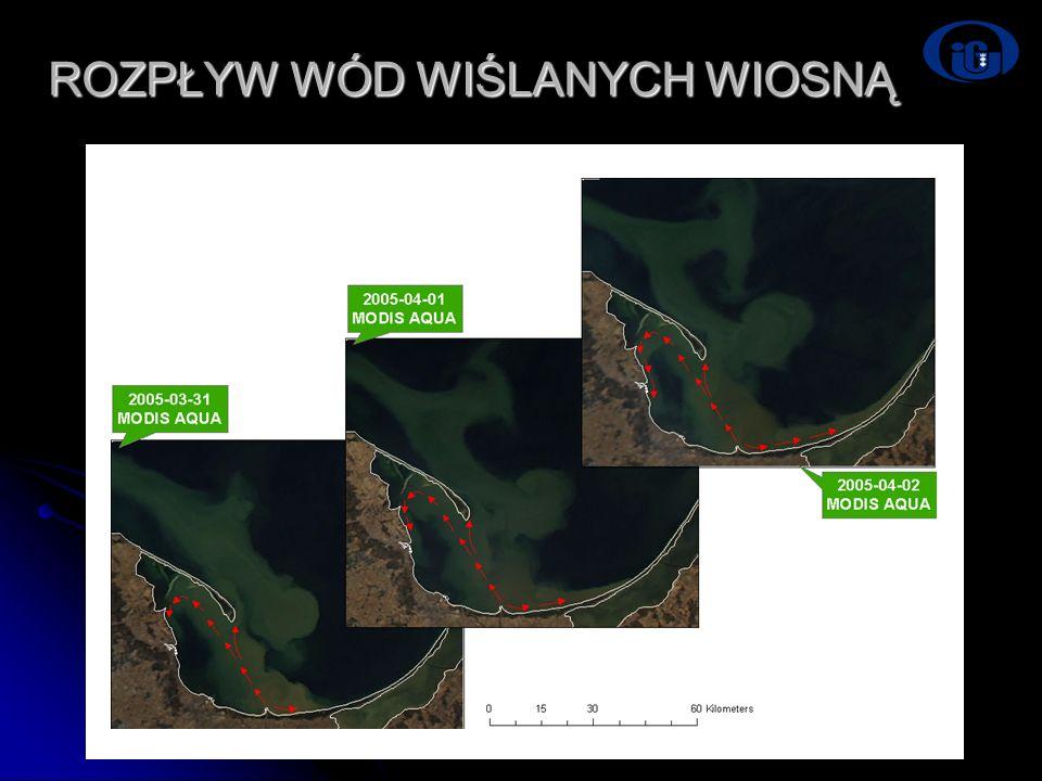Dni Technik Satelitarnych Warszawa 21-24.06.2007 ROZPŁYW WÓD WIŚLANYCH WIOSNĄ