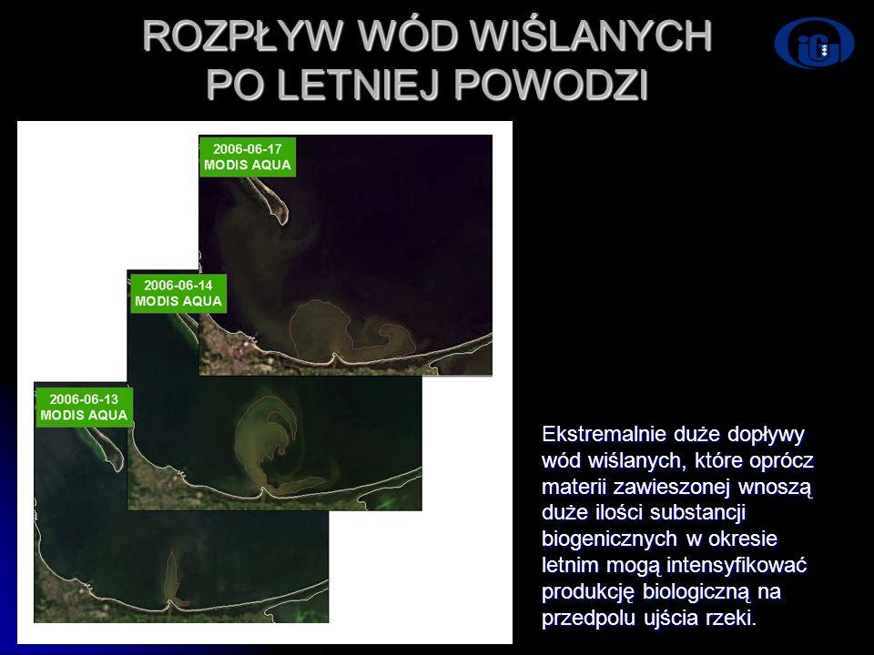 Dni Technik Satelitarnych Warszawa 21-24.06.2007 ROZPŁYW WÓD WIŚLANYCH PO LETNIEJ POWODZI Ekstremalnie duże dopływy wód wiślanych, które oprócz materi