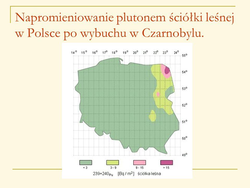 Napromieniowanie plutonem ściółki leśnej w Polsce po wybuchu w Czarnobylu.