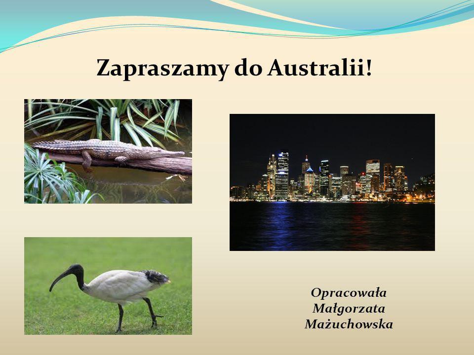 Zapraszamy do Australii! Opracowała Małgorzata Mażuchowska