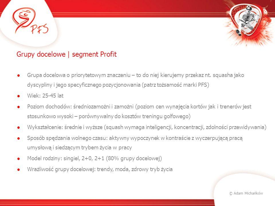 © Adam Michańków Grupy docelowe | segment Profit Esencja TG (target group): Najważniejsza jest dla nich praca.