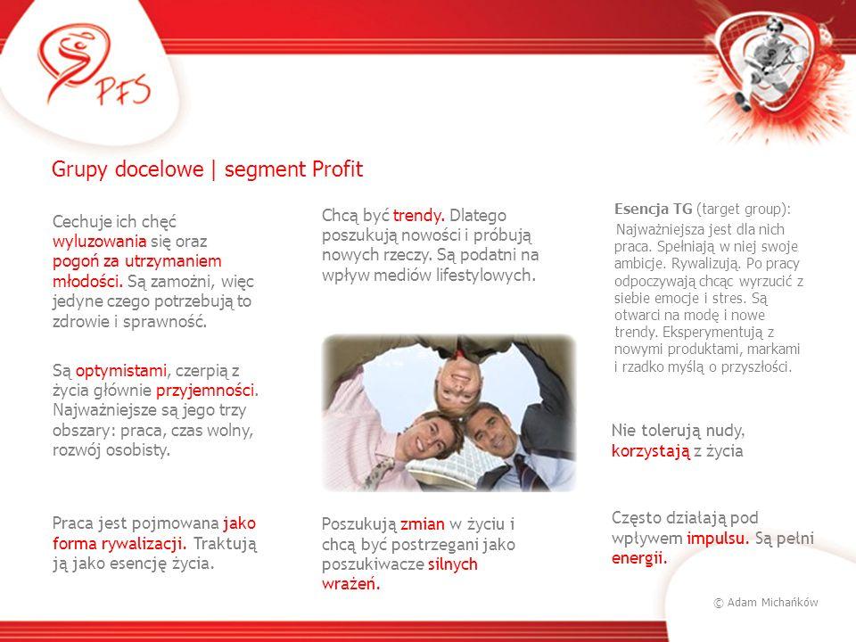 © Adam Michańków Grupy docelowe | segment Profit Esencja TG (target group): Najważniejsza jest dla nich praca. Spełniają w niej swoje ambicje. Rywaliz