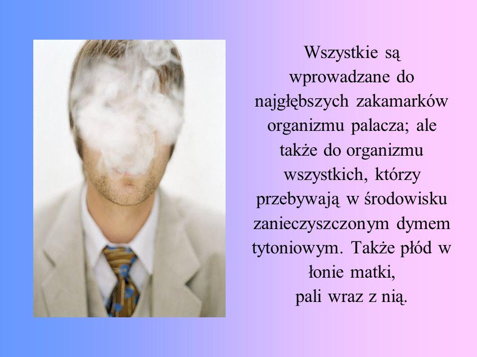 Wszystkie są wprowadzane do najgłębszych zakamarków organizmu palacza; ale także do organizmu wszystkich, którzy przebywają w środowisku zanieczyszczo