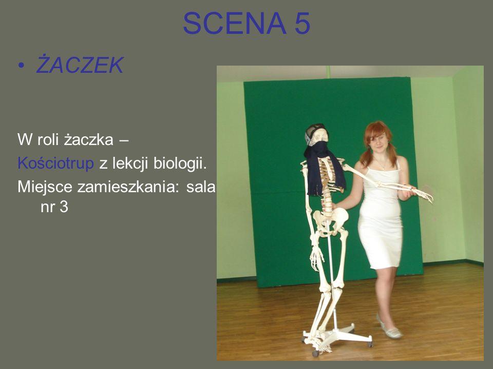 SCENA 5 ŻACZEK W roli żaczka – Kościotrup z lekcji biologii. Miejsce zamieszkania: sala nr 3