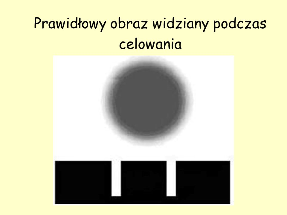 Rys. 1. Prawidłowy obraz widziany podczas celowania Prawidłowy obraz widziany podczas celowania