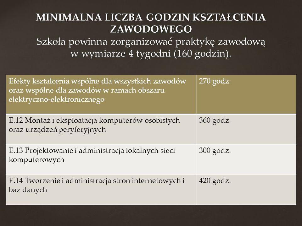 Efekty kształcenia wspólne dla wszystkich zawodów oraz wspólne dla zawodów w ramach obszaru elektryczno-elektronicznego 270 godz. E.12 Montaż i eksplo