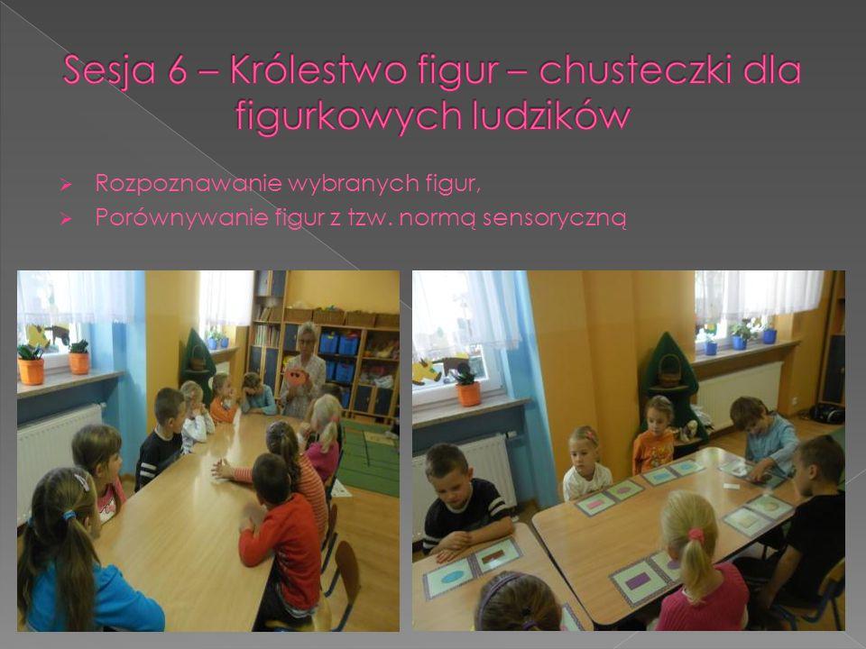 Rozpoznawanie wybranych figur, Porównywanie figur z tzw. normą sensoryczną
