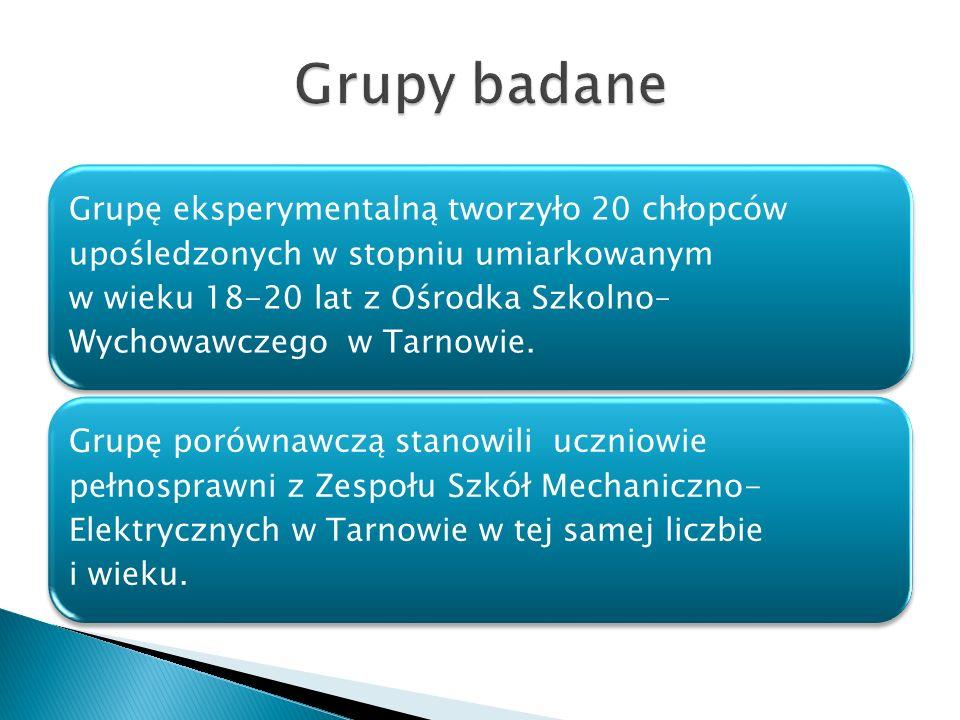Grupę eksperymentalną tworzyło 20 chłopców upośledzonych w stopniu umiarkowanym w wieku 18-20 lat z Ośrodka Szkolno– Wychowawczego w Tarnowie. Grupę p