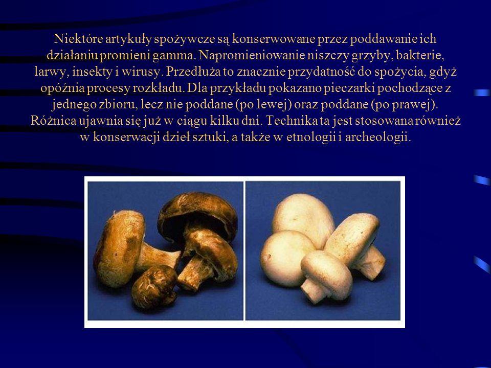 Niektóre artykuły spożywcze są konserwowane przez poddawanie ich działaniu promieni gamma. Napromieniowanie niszczy grzyby, bakterie, larwy, insekty i