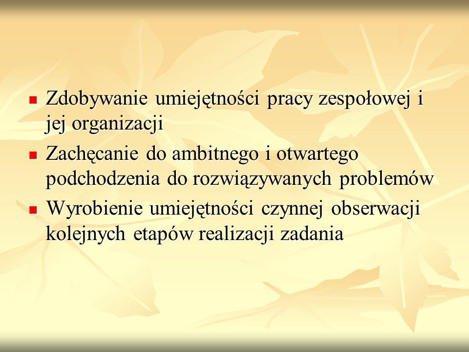 Zdobywanie umiejętności pracy zespołowej i jej organizacji Zdobywanie umiejętności pracy zespołowej i jej organizacji Zachęcanie do ambitnego i otwart