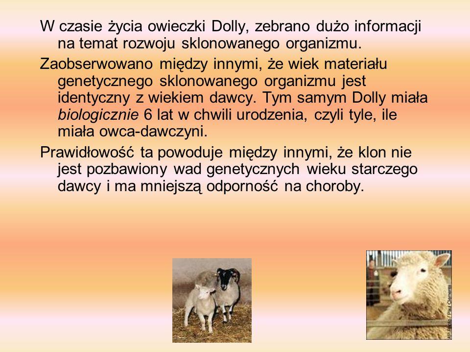 OWCA DOLLY Owca Dolly - owca, pierwszy w historii ssak, który przyszedł na świat w skutek sklonowania komórek somatycznych dorosłego osobnika. Imię za
